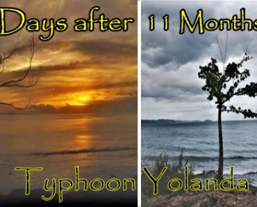 Hope Springs in 'Yolanda'-hit Areas, 11 Months after Tragedy Struck