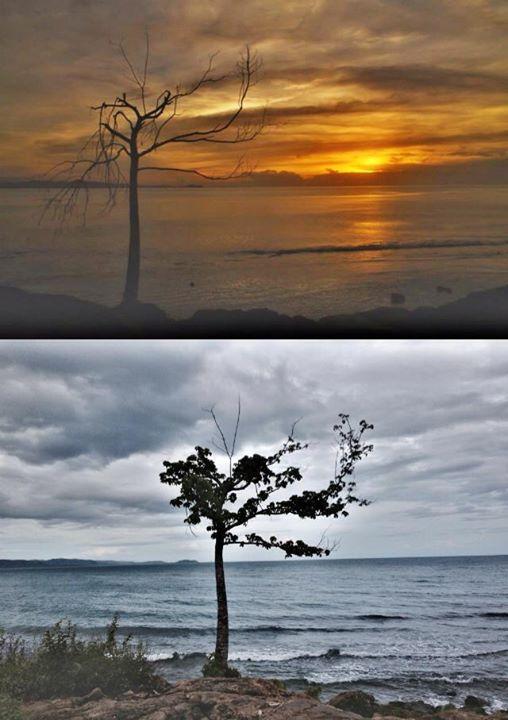 after typhoon yolanda
