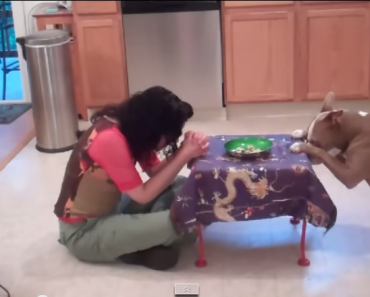 This Dog Knows Really Awesome Tricks!