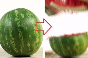 Magic Tricks You Can Do Using Everyday Objects