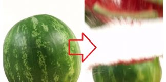 watermelon bomb and other magic tricks