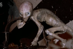 Mysterious Human-like Creature Continues to Puzzle Scientists
