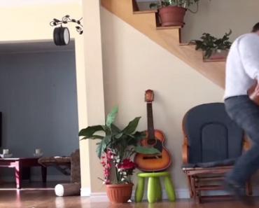 Instant Karma? Cat Gets Sweet Revenge After Owner Kicks Him Off the Chair