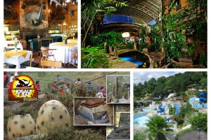 Five New Things To Do in Baguio City