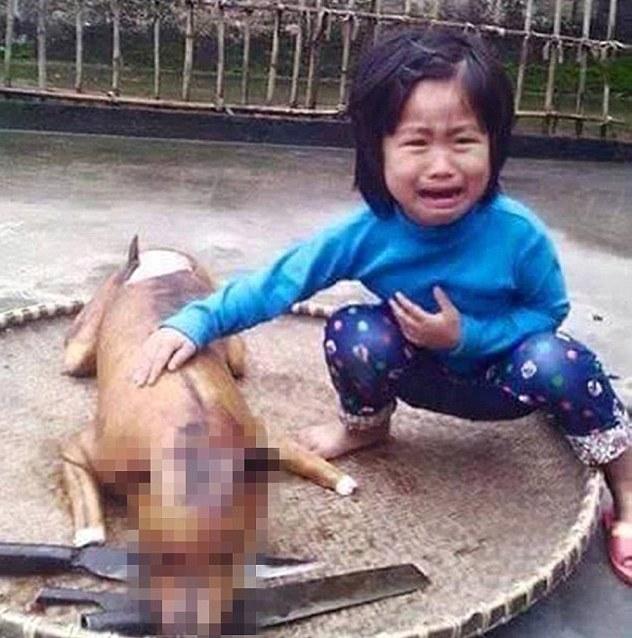 girl find her missing dog roasted