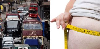 belly fat linked to traffic noises
