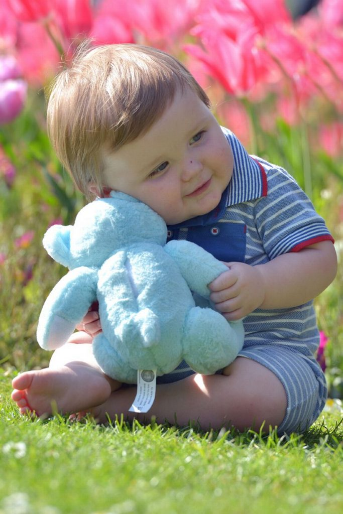 Baby Noah is now 1 year old; He hugs a stuffed toy with a recording of Teddy's heartbeat Photo credit: Trinity Mirror/Mirror UK