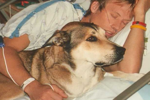 Touching Tribute to a Dog…From the Dying Man He Did Not Leave
