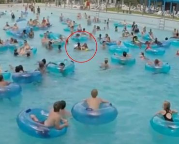Lifeguard Unbelievably Spots Drowning Child in a Pool Packed with Swimmers