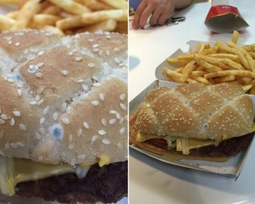 VIRAL: Blue Mold Found in McDonald's Burger