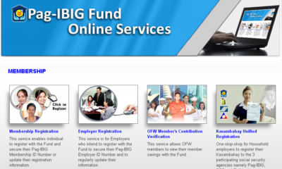 pag-ibig online services