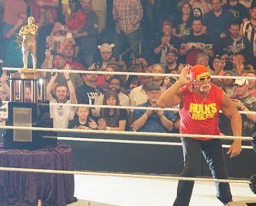 WWE Terminates Hulk Hogan, Deletes Wrestler from Hall of Fame Page