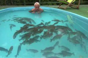 Man Swims with Terrifying Piranhas