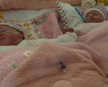 Touching Story: Premature Twins Fighting for Their Lives Hold Hands in the Incubator