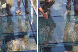 Tourists Stampede As 3,500-Ft-High Glass Walkway Cracks Beneath Their Feet