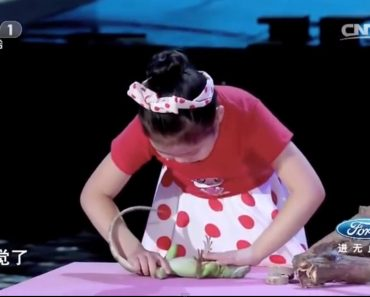 Chinese Girl, 5, Hypnotizes Animals With The Touch of Her Hands