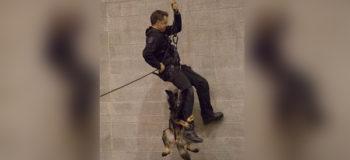 VIRAL: Police Dog Holds Onto Rappelling Cop's Leg