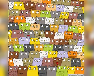 Viral Puzzle: Can You Spot the Cat in the Parliament of Owls?