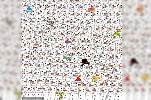 Viral Puzzle: Can You Spot the Panda Among the Snowmen?