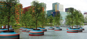 Rotterdam Will Soon Have A Unique Floating Forest