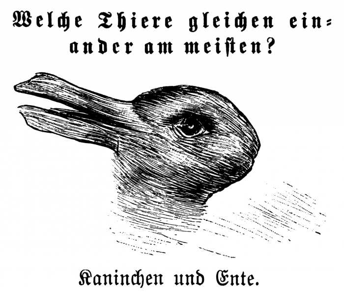 duck and rabbit image