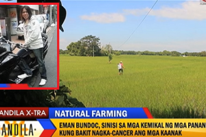 Successful Filipino Architect in Japan Returns to the Philippines to Become a Fulltime Farmer