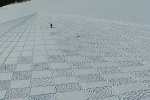 British Artist Creates Stunning Drawings In The Snow Using His Feet