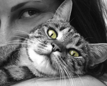 4 Unexpected Health Benefits of Having a Pet