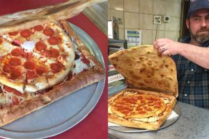 Best Idea Ever: This Pizza Box Is Also Made Of Pizza