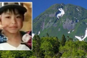 Japanese Boy Reunited with Parents Who Left Him in Bear-Infested Forest as Punishment