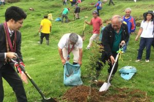 Philippines' First Cherry Blossom Trees Planted in Benguet