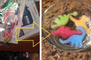 Mom Finds 'Drugs' in Daughter's Drawer… But They Turn into the Cutest Dinosaurs!