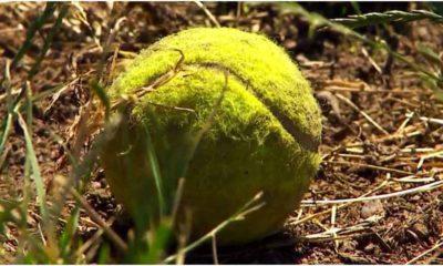 tennis ball bombs