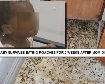 Baby Survived on Roaches after Mom Dies in Shower