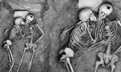 dead-Couple