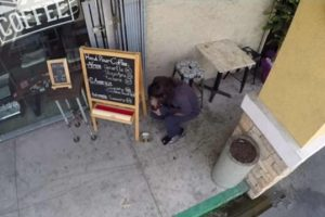 Shop Owner Discovers Homeless Man Eating Food She Leaves Outside for Dogs