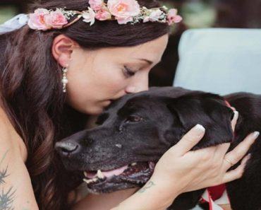 Cancer-stricken 15-Year-Old Dog Lived Long Enough to See Master Get Married