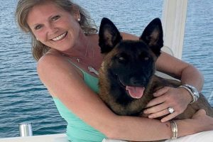 Dog Swims 6 Miles to Shore after Falling Overboard in the Lake
