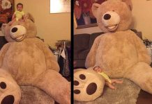 giant-teddy-bear-from-grandpa