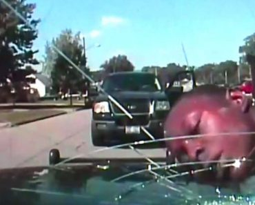 Dash Cam Video Captures Cop Violently Smashing Windshield With Man's Face