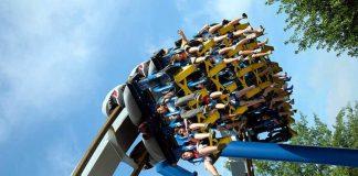 kidney-stone-rollercoaster-2_opt