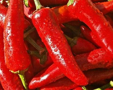 Man Burns a Hole in His Throat after Eating World's Hottest Pepper