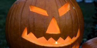 pumpkin-2_opt