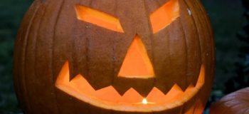 7 Reasons Why You Should Eat Pumpkin