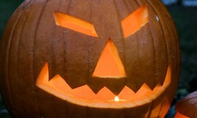 pumpkin-2_opt