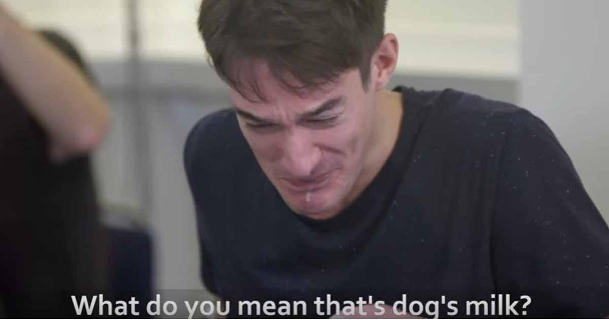 dog-milk-prank-peta-3