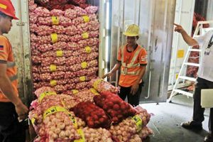 PH Supermarket Chains to Get Onions, Garlic Direct from Farmers
