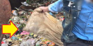 Workers Sift Through Tons of Garbage to Find $30k in Pillow a Man Accidentally Threw