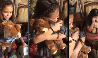 girl teddy bear grandpa voice featured