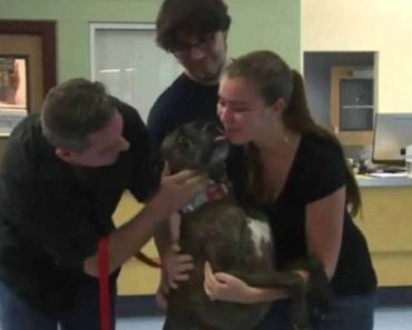 Family Finally Gets Reunited With Lost Puppy After 9 Years